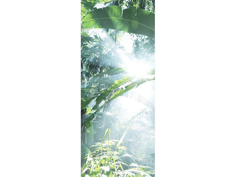 Türtapete Dschungelstar