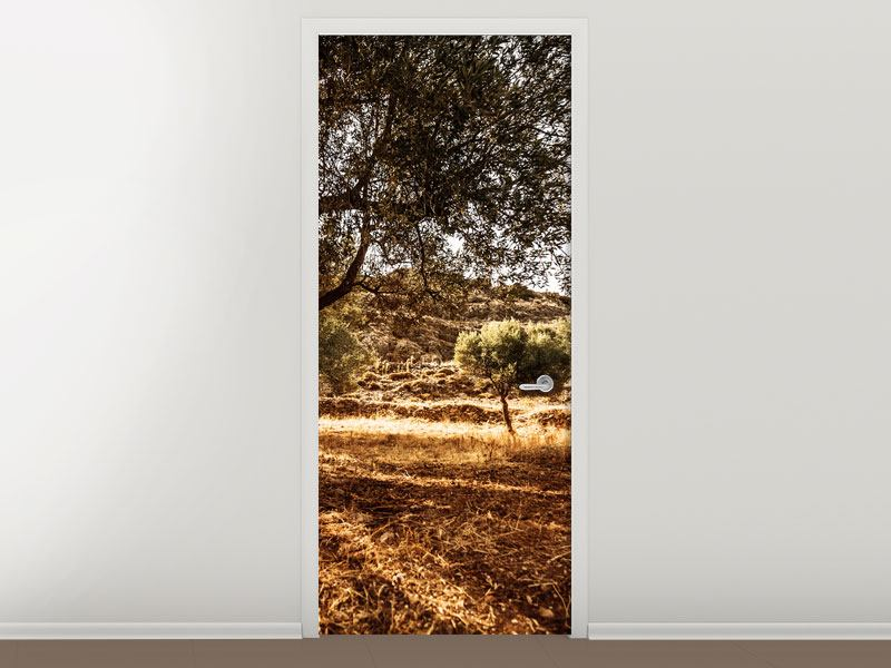 Türtapete Olivenhain