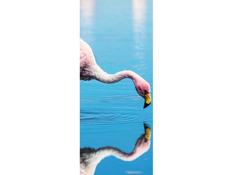 Türtapete Der Flamingo