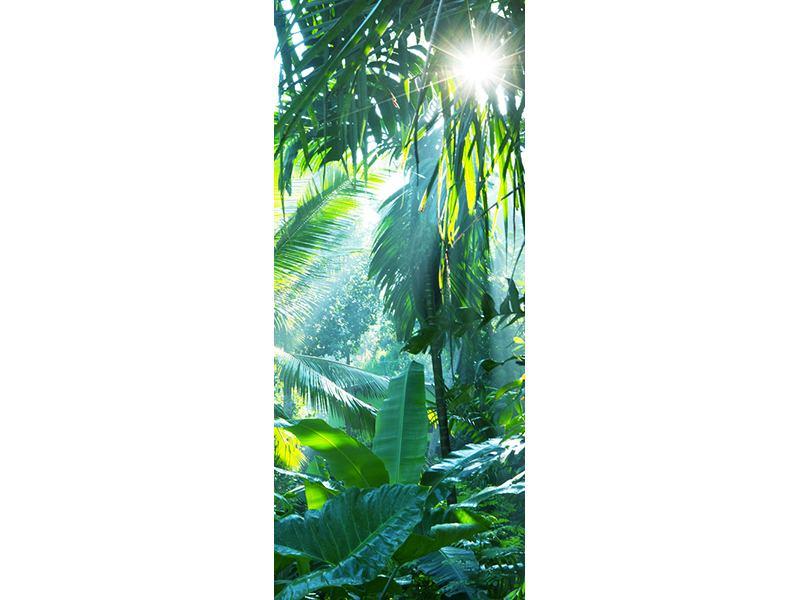 Türtapete Im Tropenwald