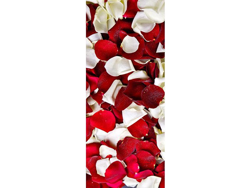 Türtapete Rosenblätter