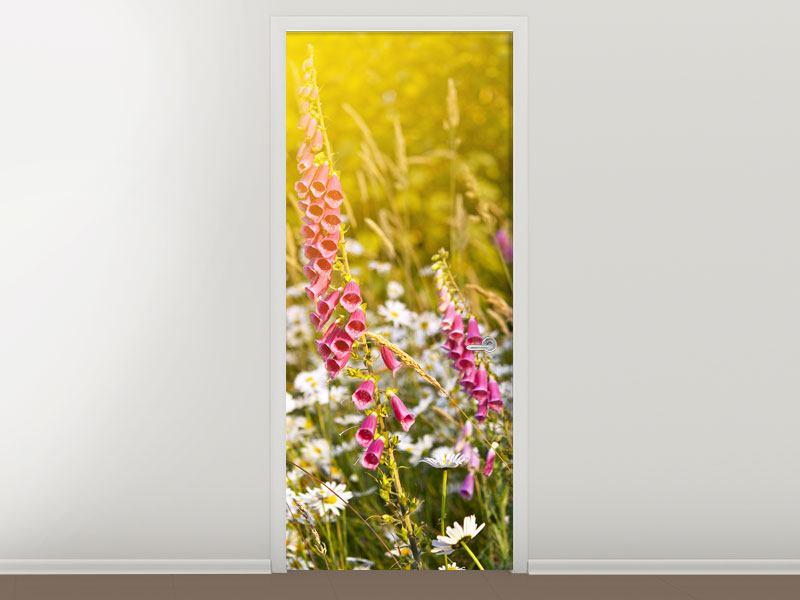 Türtapete Sommerliche Blumenwiese