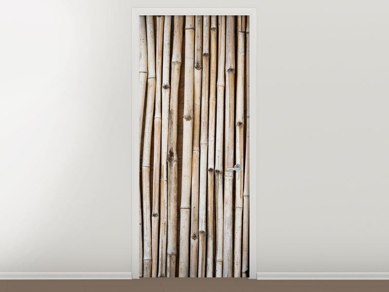 Türtapete Getrocknete Bambusrohre