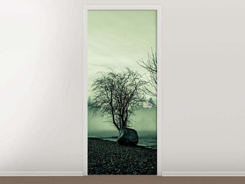 Türtapete Der Auwald im Nebel
