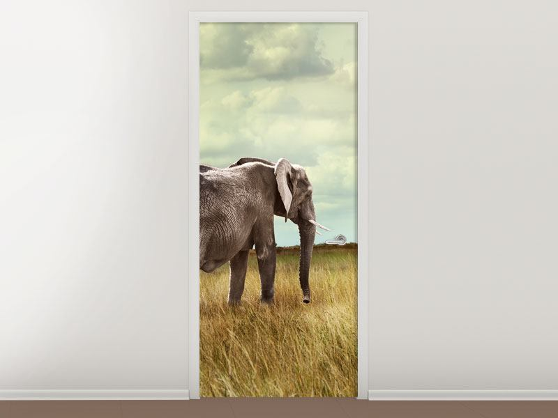 Türtapete Elefanten und Feng Shui