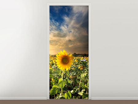 Türtapete Sunny Flowers