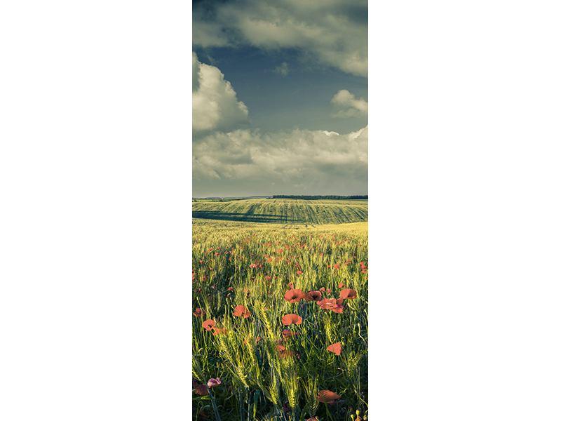 Türtapete Der Mohn im Weizenfeld
