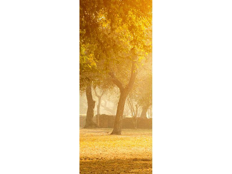 Türtapete Romantik unter Bäumen