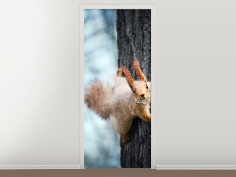 Türtapete Das Eichhörnchen