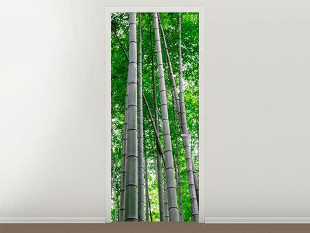 Türtapete Bambuswald