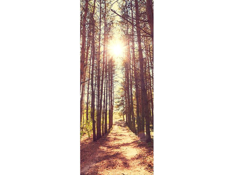 Türtapete Licht am Ende des Waldweges