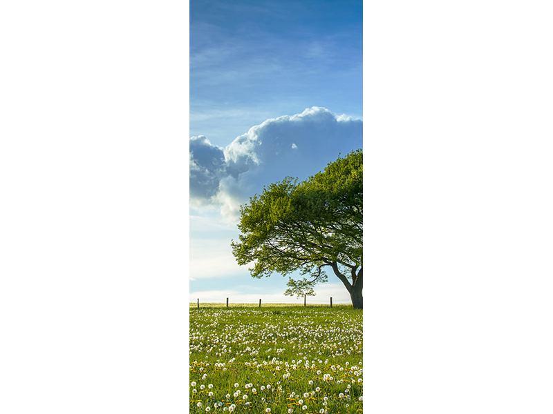 Türtapete Frühlingsbaum