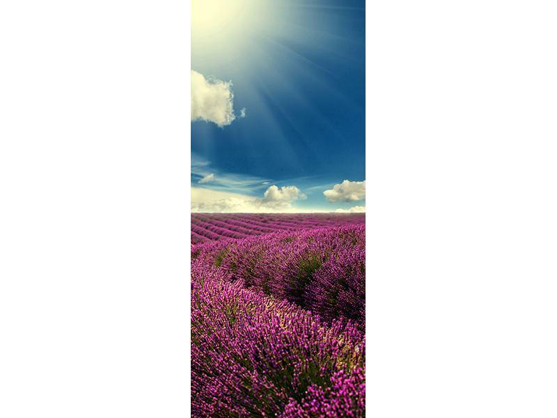 Türtapete Das Lavendeltal