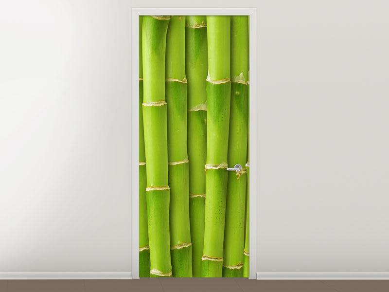 Türtapete Bambuswand