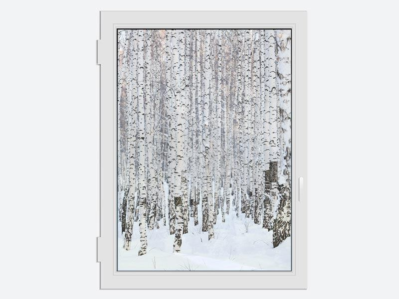 Window Print The Birch Forest In Winter