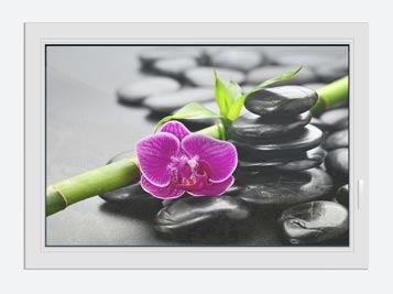 Window Print Feng Shui Orchid