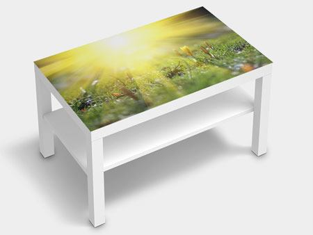 Furniture Foil Flowery Meadow