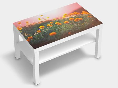Furniture Foil The mountain Meadow