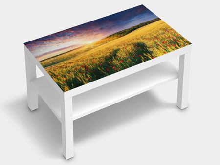Furniture Foil A Flower Field At Sunrise