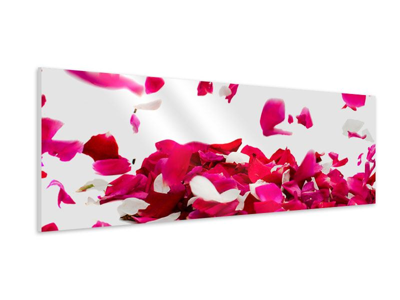 Hartschaumbild Panorama Für mich soll`s rote Rosen regnen