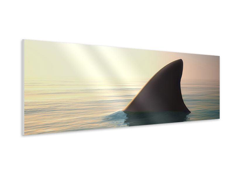 Hartschaumbild Panorama Haifischflosse
