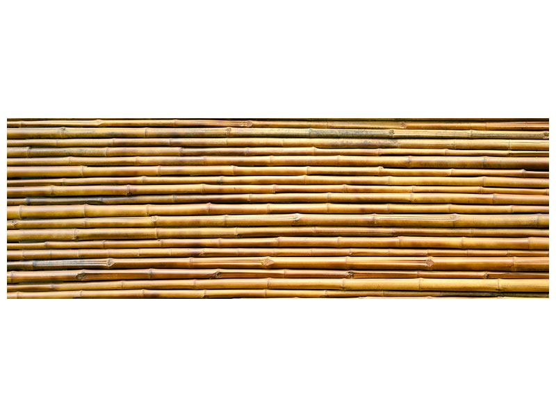 Hartschaumbild Panorama Bambus
