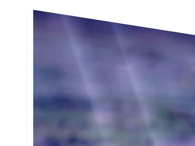 Hartschaumbild Panorama Lotus Duo im Sonnenaufgang