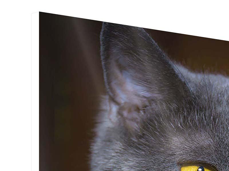 Hartschaumbild Panorama Katzengöttin