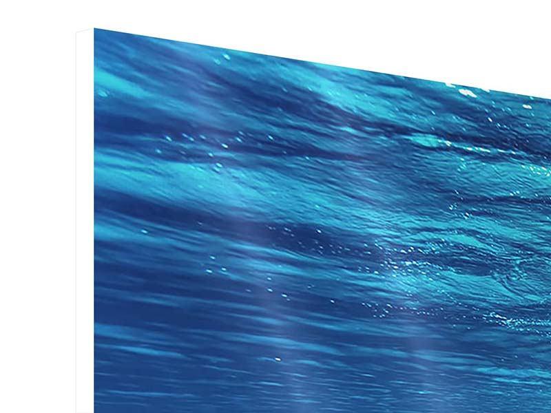 Hartschaumbild Panorama Schönheit unter Wasser