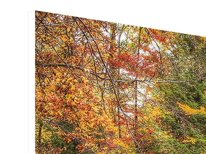 Hartschaumbild Panorama Herbst beim Wasserfall