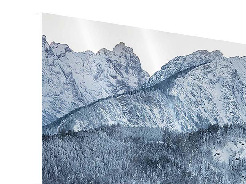 Hartschaumbild Panorama Schwarzweissfotografie Berge