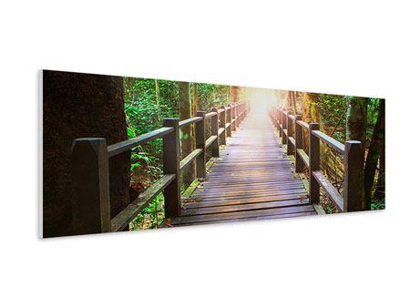 Hartschaumbild Panorama Die Brücke im Wald