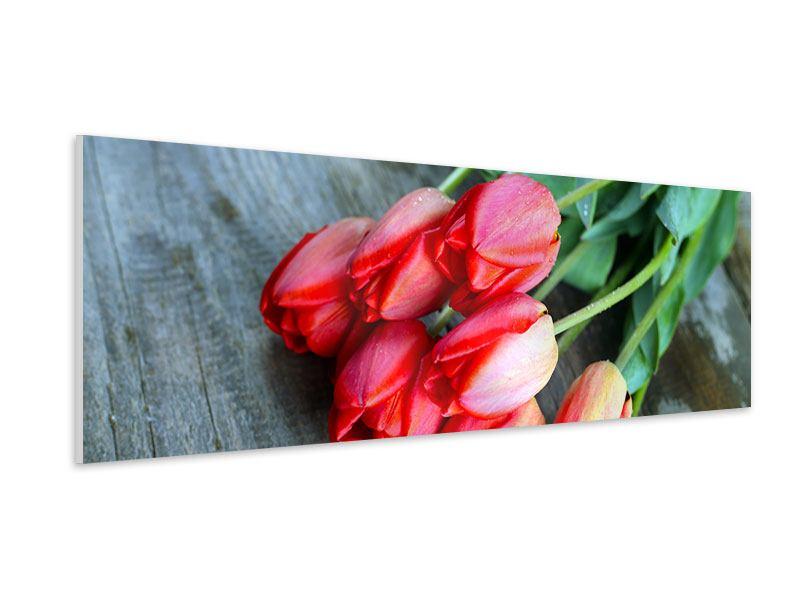 Hartschaumbild Panorama Der rote Tulpenstrauss
