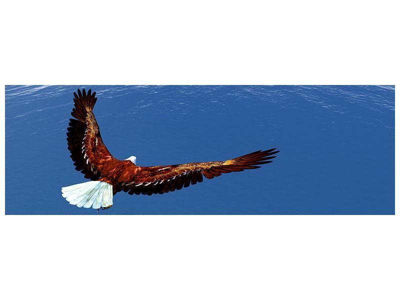 Hartschaumbild Panorama Der Adler