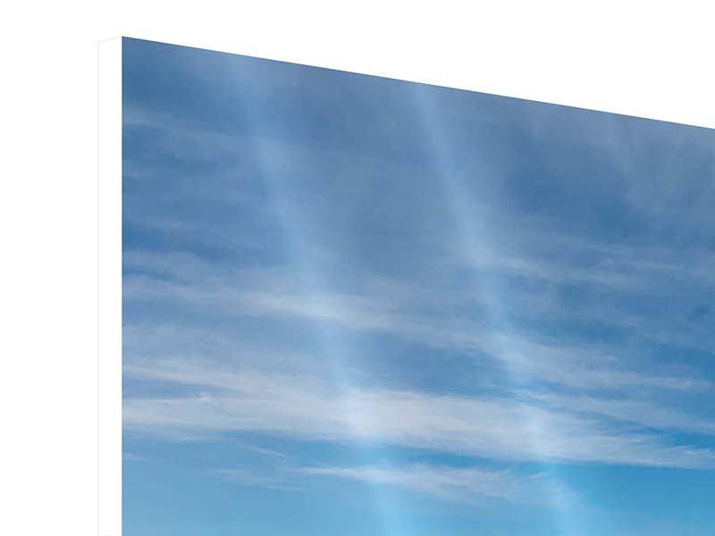 Hartschaumbild Panorama Warten auf die Arche Noah