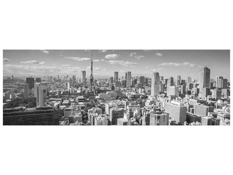 Hartschaumbild Panorama Tokio