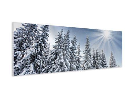 Hartschaumbild Panorama Wintertannen