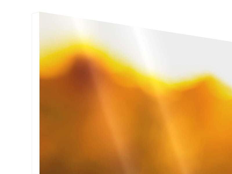 Hartschaumbild Panorama Macro-Sonnenblume