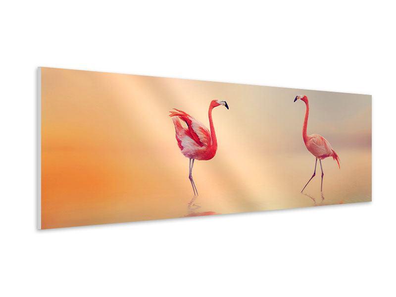 Hartschaumbild Panorama Romantische Flamingos