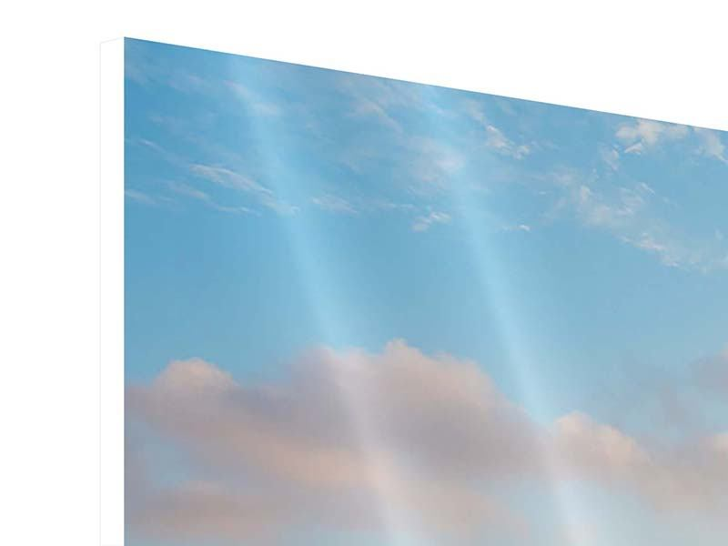 Hartschaumbild Panorama Das blühende Lavendelfeld