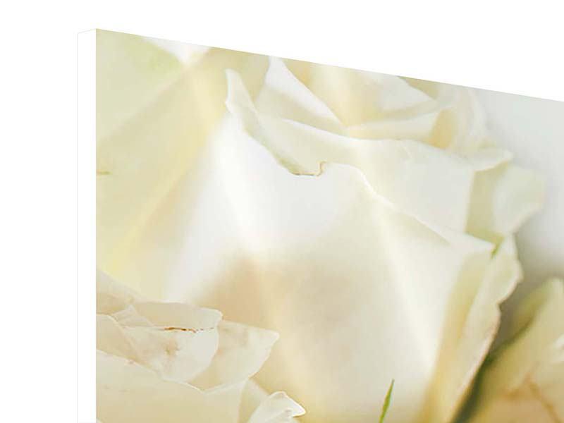 Hartschaumbild Panorama Weisse Rosen