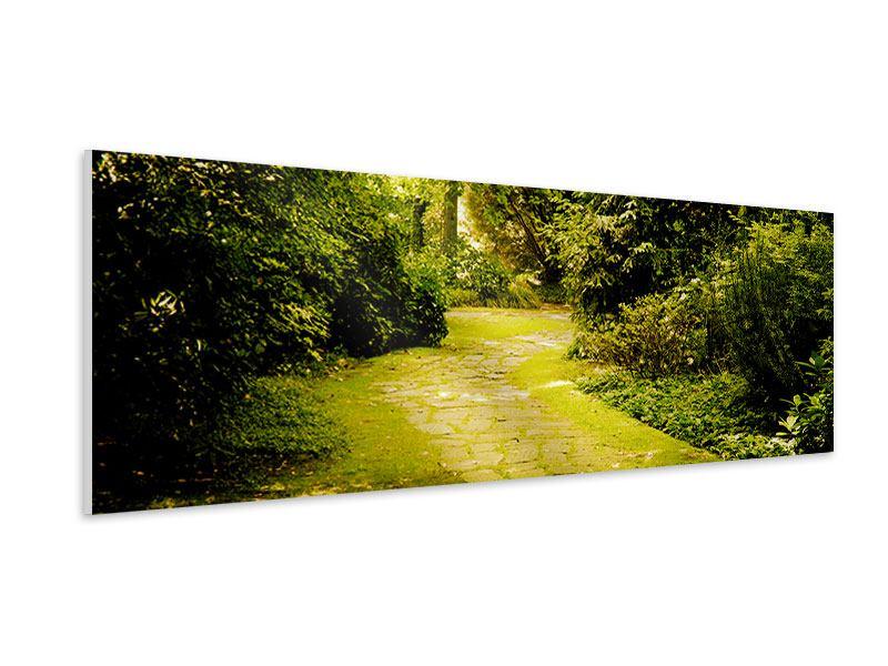 Hartschaumbild Panorama Der bemooste Weg