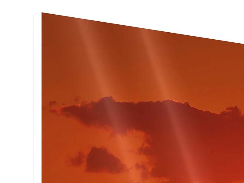 Hartschaumbild Panorama African Feeling