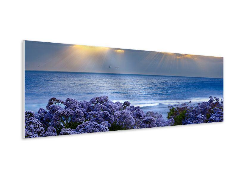 Hartschaumbild Panorama Der Lavendel und das Meer