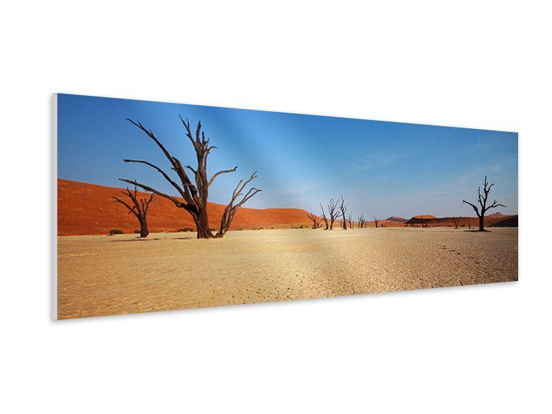 Hartschaumbild Panorama Wüste