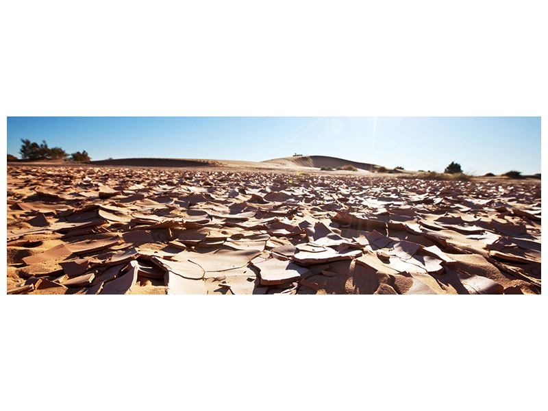 Hartschaumbild Panorama Dürre