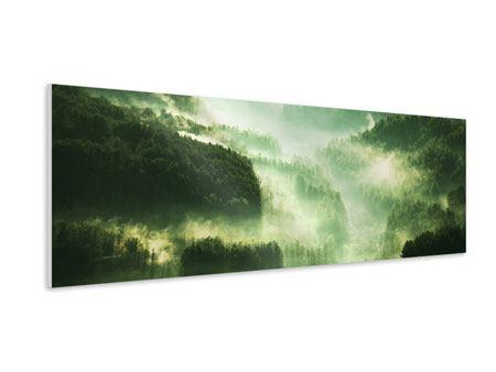 Hartschaumbild Panorama Über den Wäldern