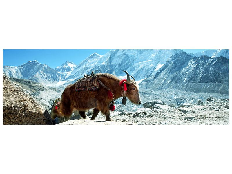 Hartschaumbild Panorama Das Himalaya-Gebirge