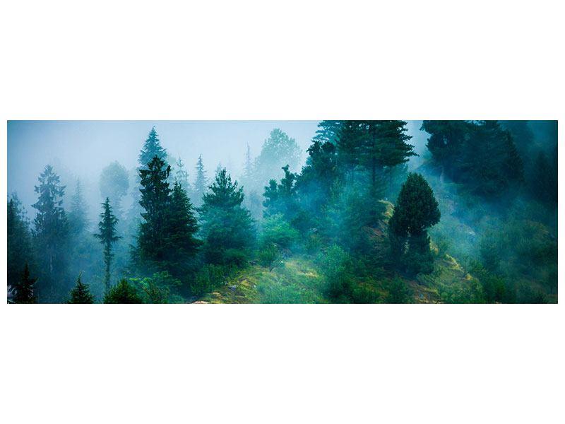 Hartschaumbild Panorama Geheimnisvoller Wald
