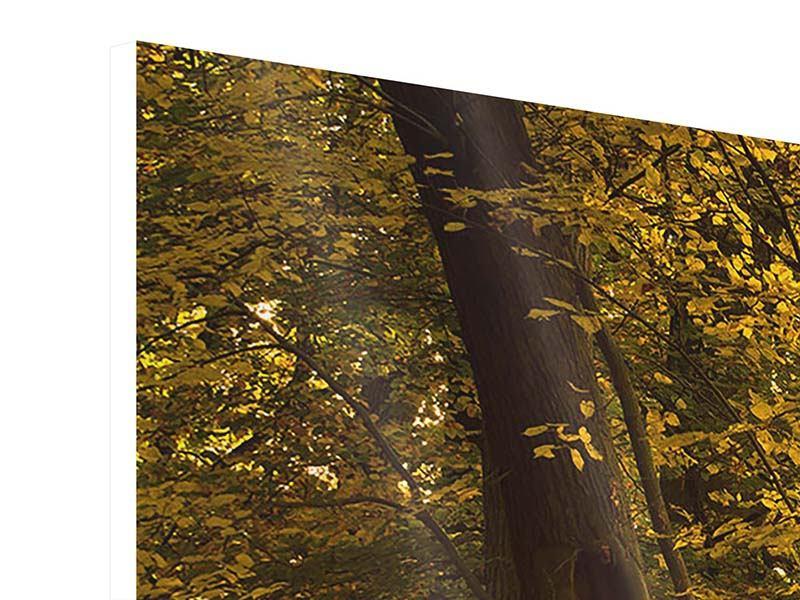 Hartschaumbild Panorama Herbstlaub